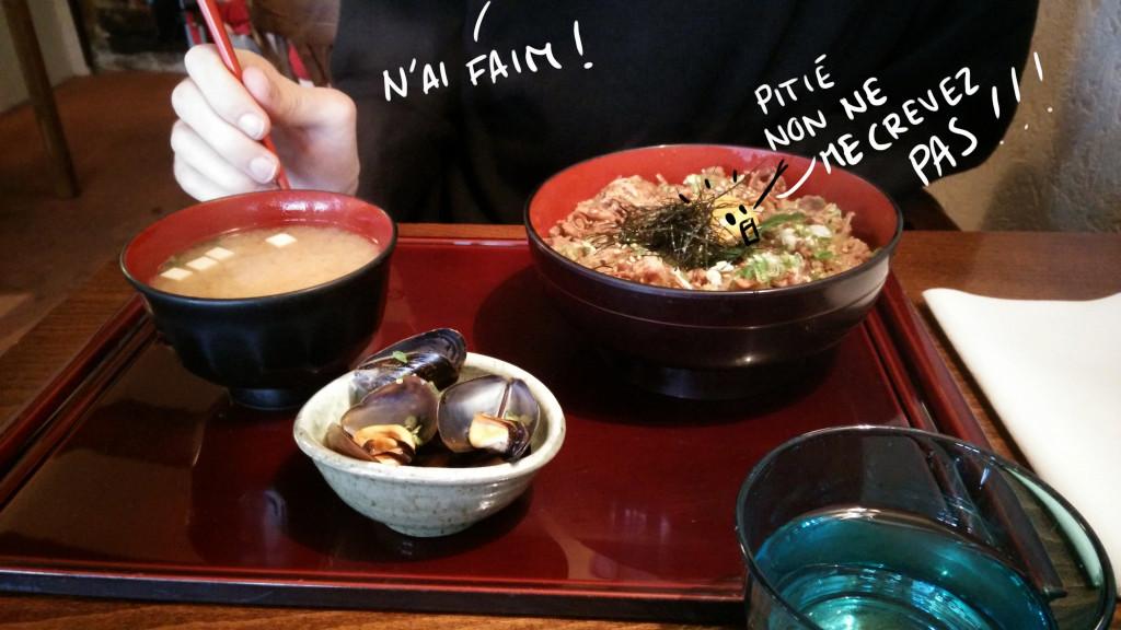 Boeuf mijoté sur un lit de riz avec un oeuf pour la sauce.
