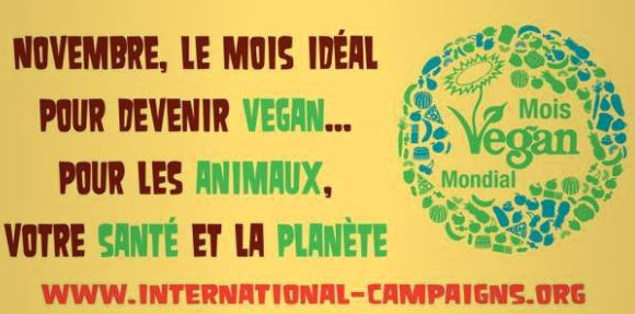2016-11-17-08_40_33-mois-mondial-vegan-lyon-2016-international-campaigns-au-place-de-la-republique-_