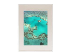 thumbnail_barriere-de-corail-ct020
