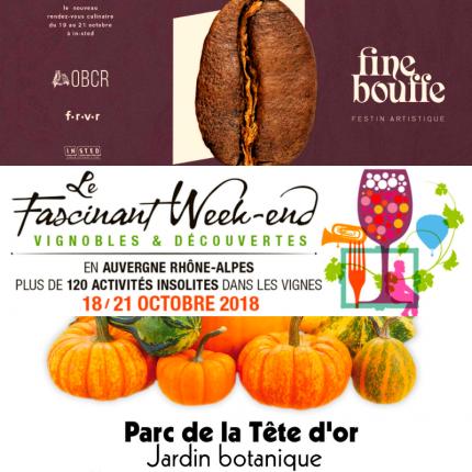 Festival Lyon