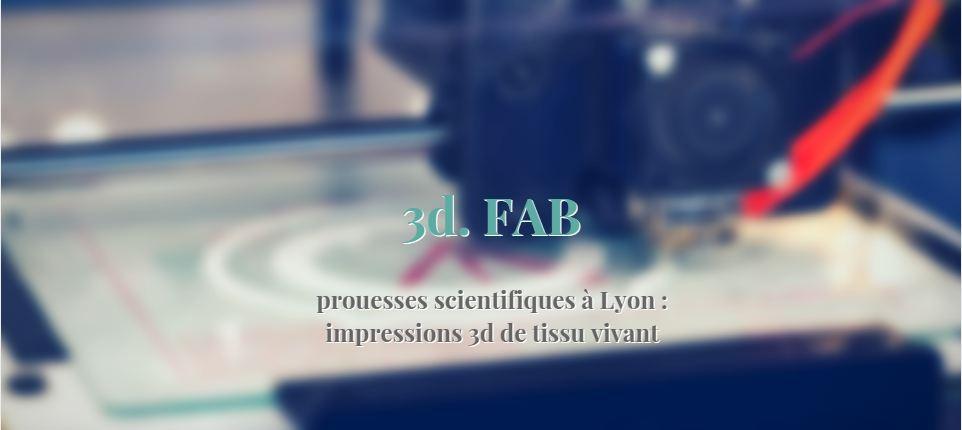 3d._FAB_plateforme_d_impression_3d_Universite_Lyon1