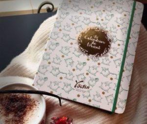 calendrier_de_lavent_voisin