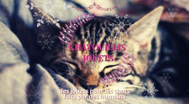 CALENDRIER DE L'AVENT J7 : Chatouillis Jouets