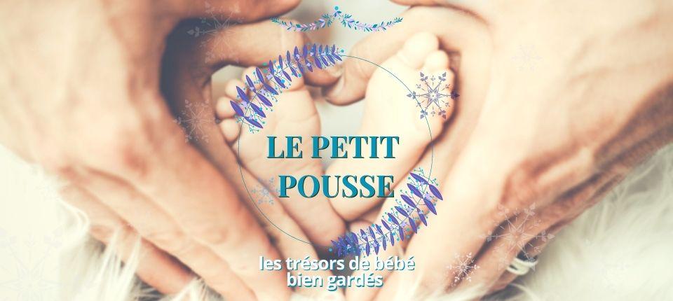CALENDRIER DE L'AVENT J9 : Le Petit Pousse, garde les trésors de bébé