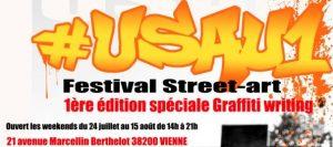 festival_street_art_vienne_lyon